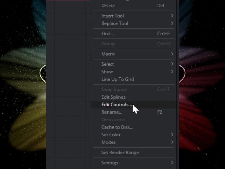 Edit Controls in Fusion